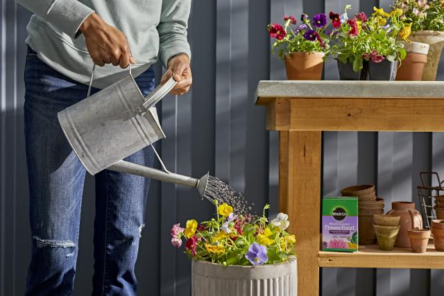 Miracle-Gro® Water Soluble Bloom Booster® Flower Food in watering can being poured