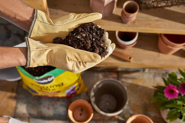 Miracle-Gro® Potting Mix in gloved hands