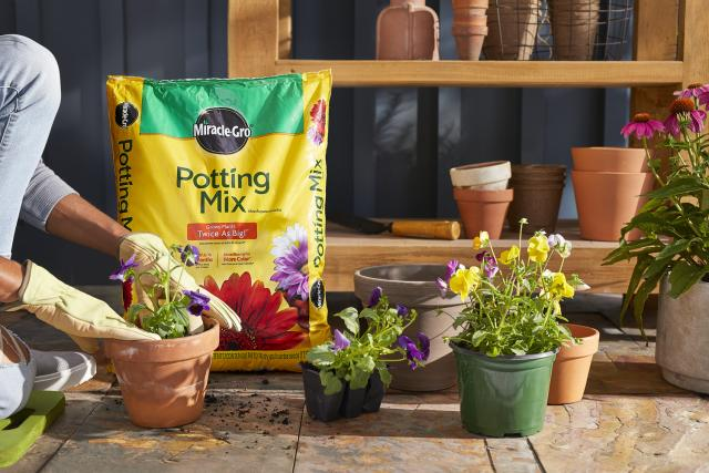 Miracle-Gro® Potting Mix amongst potted plants