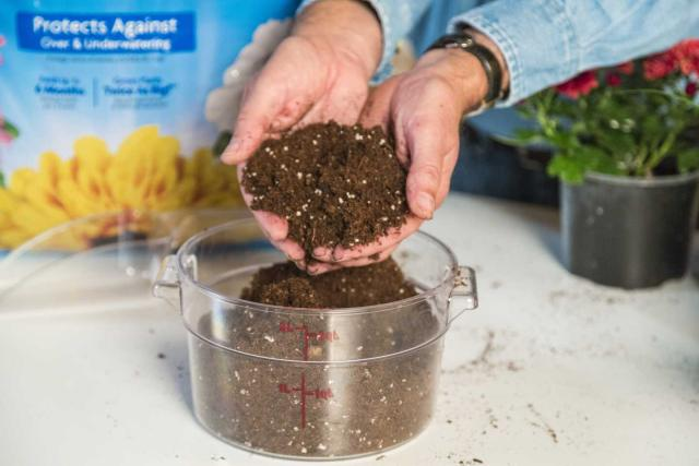 Miracle-Gro® Moisture Control® Potting Mix in woman's hands.