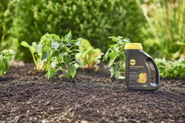 jug of plant nutrition granules in garden
