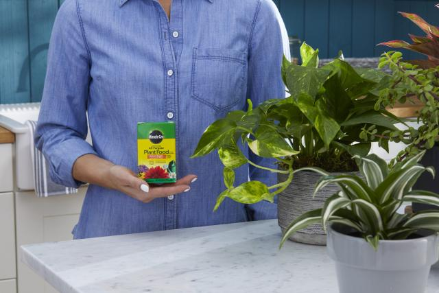 Person holding Miracle-Gro® Water Soluble All Purpose Plant Food.