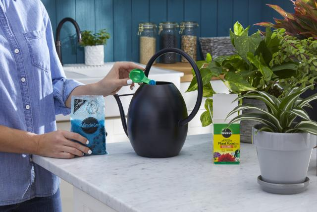 Person pouring Miracle-Gro® Water Soluble All Purpose Plant Food into watering can.