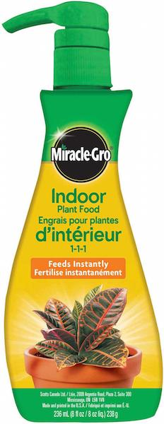 miracle gro indoor plant food foam for canada