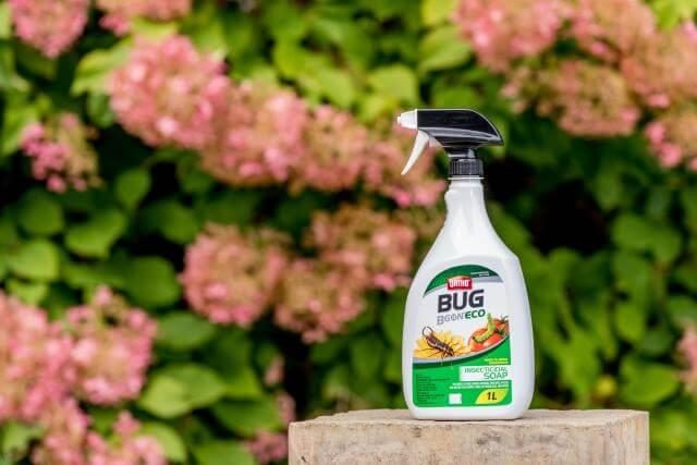 Ortho® Bug B Gon® ECO Insecticidal Soap Ready-To-Use on a patio.