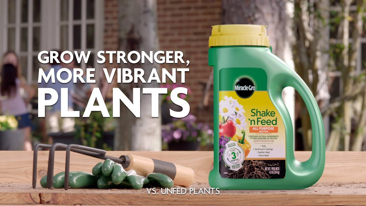 Shake 'N Feed All Purpose Plant Food - Miracle-Gro Canada